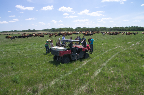 Field Day participants learning about soil, grass, and livestock